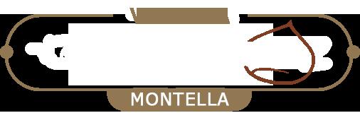 Vendita Castagne Logo